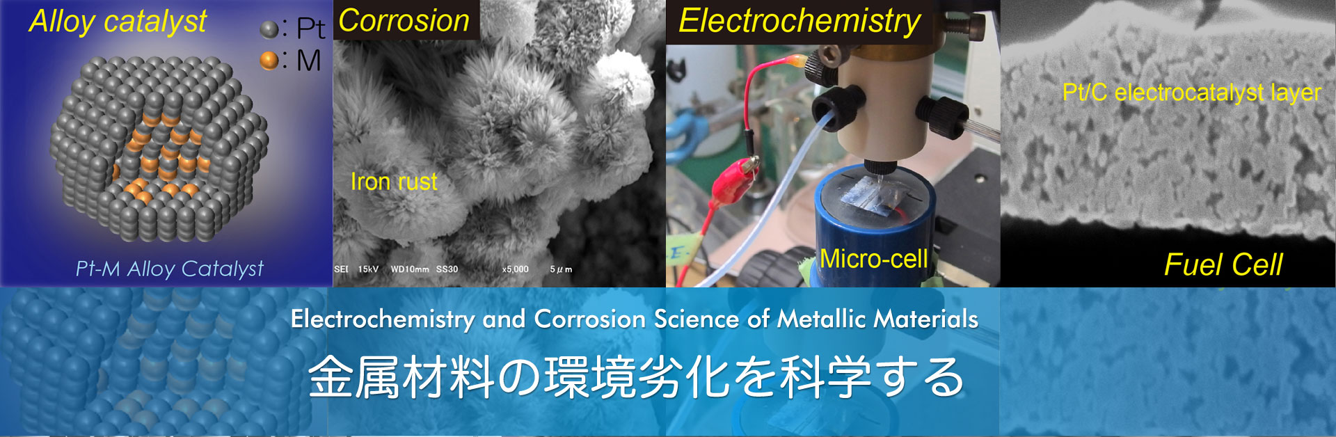 Electrochemistry and Corrosion Science of Metallic Materials